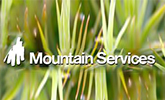 IRATA Member Mountain Services